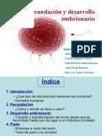 fecundaci-091210150534-phpapp02.pdf