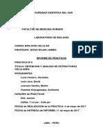 Introduccion Informe de Biologia N6