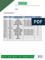 Cronograma - Contador Publico