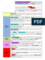 Procesamiento de la informacion(sistema nervioso).docx
