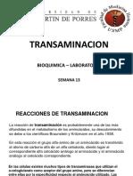 transaminacion 2017