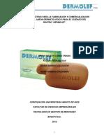 TGM_GamboaCalderonHeidyJohana_2012 (1).pdf