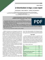 201006421424.pdf
