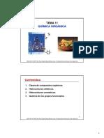 TEMA 11 Quimica Organica