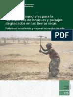 Directrices mundiales para la restauración de bosques y paisajes degradados en las tierras secas Fortalecer la resiliencia y mejorar los medios de vida