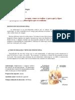 Endoscopias y Tipos de Endoscopias