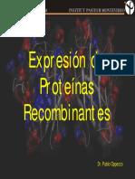 Proteinas_Recombinantes_2009