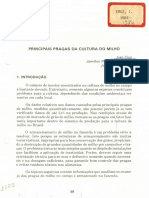 Circ 4 Principais Pragas