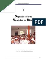 i. Organización de Ur-final