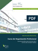 Curso de Organizacion Profesional