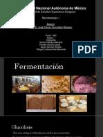 Fermentación-1602