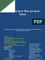 63953517 02 Estructura de La Tesis o Tesina