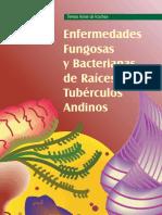 7 Enfermedades Fungosas y Bacterianas de RTA.pdf
