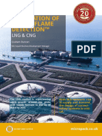 Visual Flame Detection LNG CNG