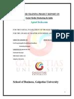 summertrainingprojectreporton-130103085245-phpapp02.pdf