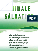 0_animale_salbatice