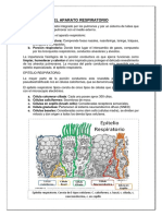 Histologia del Aparato Nervioso, respiratorio, y geniturinario