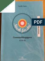Grammatikkoppgaver Nivå b2- Cecile Lønn