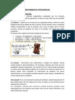 Los Instrumentos y Recursos Topográficos Empleados Por Los Romanos Posiblemente Hayan Sido Los Siguientes