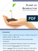 Plant as Bioreactor