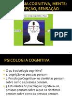 02 COGNIÇÃO MENTE PERCEPÃO.pdf