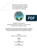 Informe Final 002 PPS