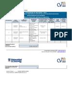 FormatoCronogramaActividades IAM