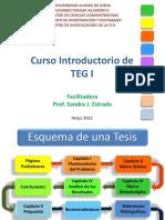 curso-introductorio-estructura-de-un-teg-blog.pdf