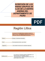 Descripción.pptx