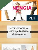 DIAPOSITIVAS TENENCIA Y REGIMEN DE VISITAS 26 octubre 2017 5 pm.pptx [Autoguardado].pptx