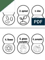 pumpkin life cycle activity