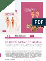 Sexo reproduccion humana