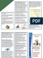 Brochur Administracion de Efectivo