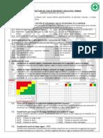02.Anexo Estructura PSST Membretado