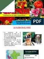 Fora en El Peru (Antalogía)