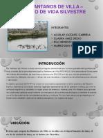 Anp- Pantanos de Villa