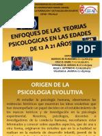 Taller Enfoque de Las Teorias Psicologicas en Las Edades11