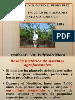 Agroforesteria Actual