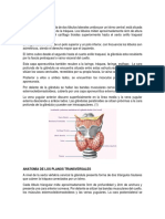 1-GL__NDULA-TIROIDES.docx%3b filename%2a%3d UTF-8%27%271-GLÁNDULA-TIROIDES
