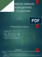 Pembelahan Meiosis, Spermatogenesis, Dan Oogenesis