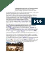 La Minería Ilegal Se Caracteriza Por Desarrollarse en Lugares Remotos