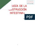 guia de la obstruccion intestinal.pdf