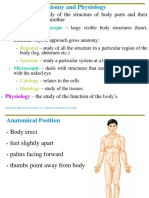 Anatomical Position and Body Cavities Organ System Student Spring 09
