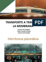 Transporte a Traves de La Membrana