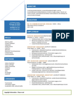 Resume Template (2)