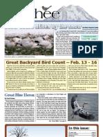 02-2009 Towhee Newsletter Tahoma Audubon Society