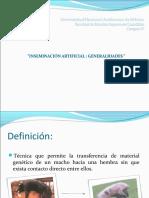 inseminacinartificial-101125151601-phpapp02