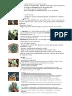 Cactus Desc