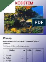 EKOSISTEM (Revisi)