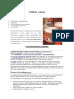 COCTEL DE LUCUMA.docx